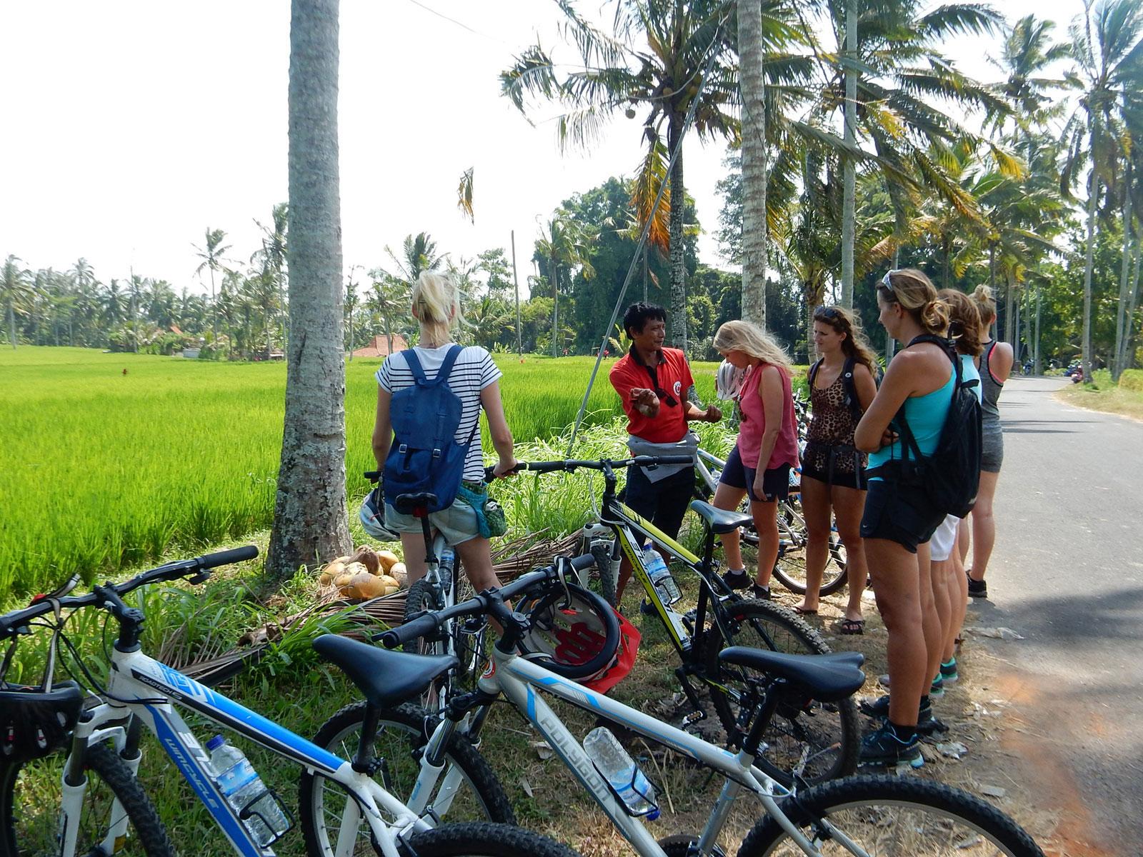 Downhill Cycling Bali