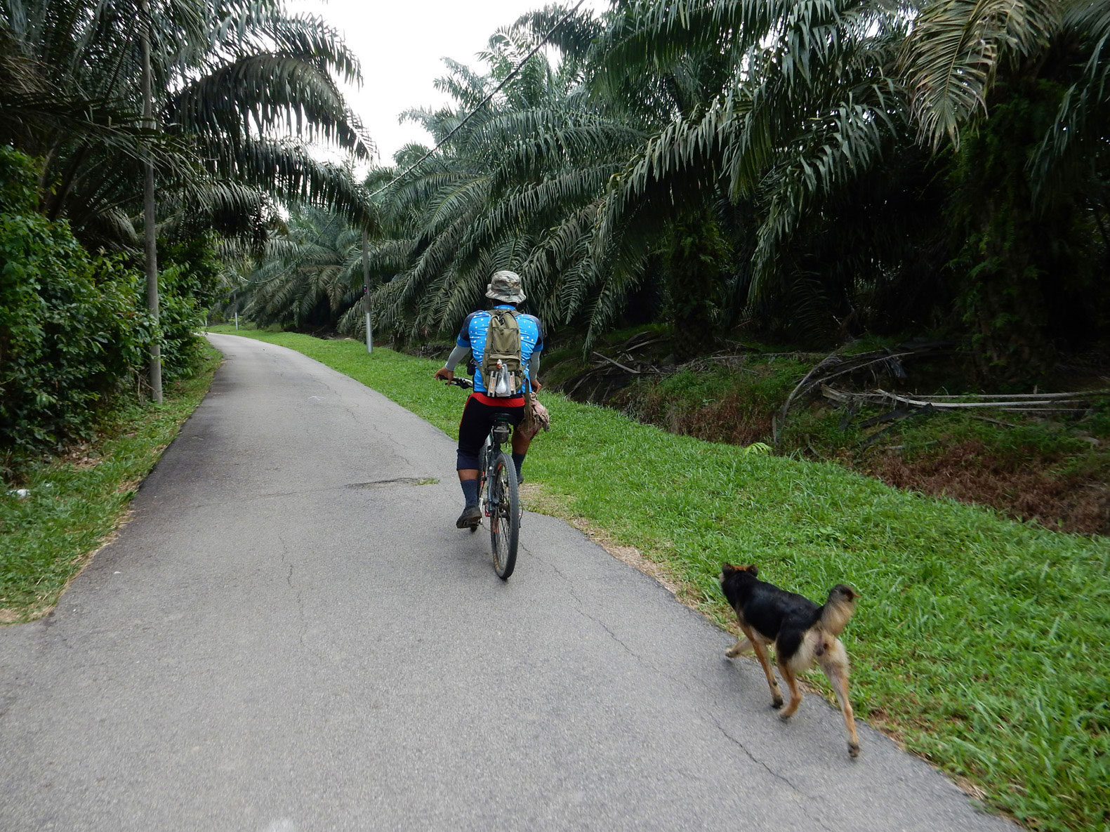 Radtour Melaka Malaysia