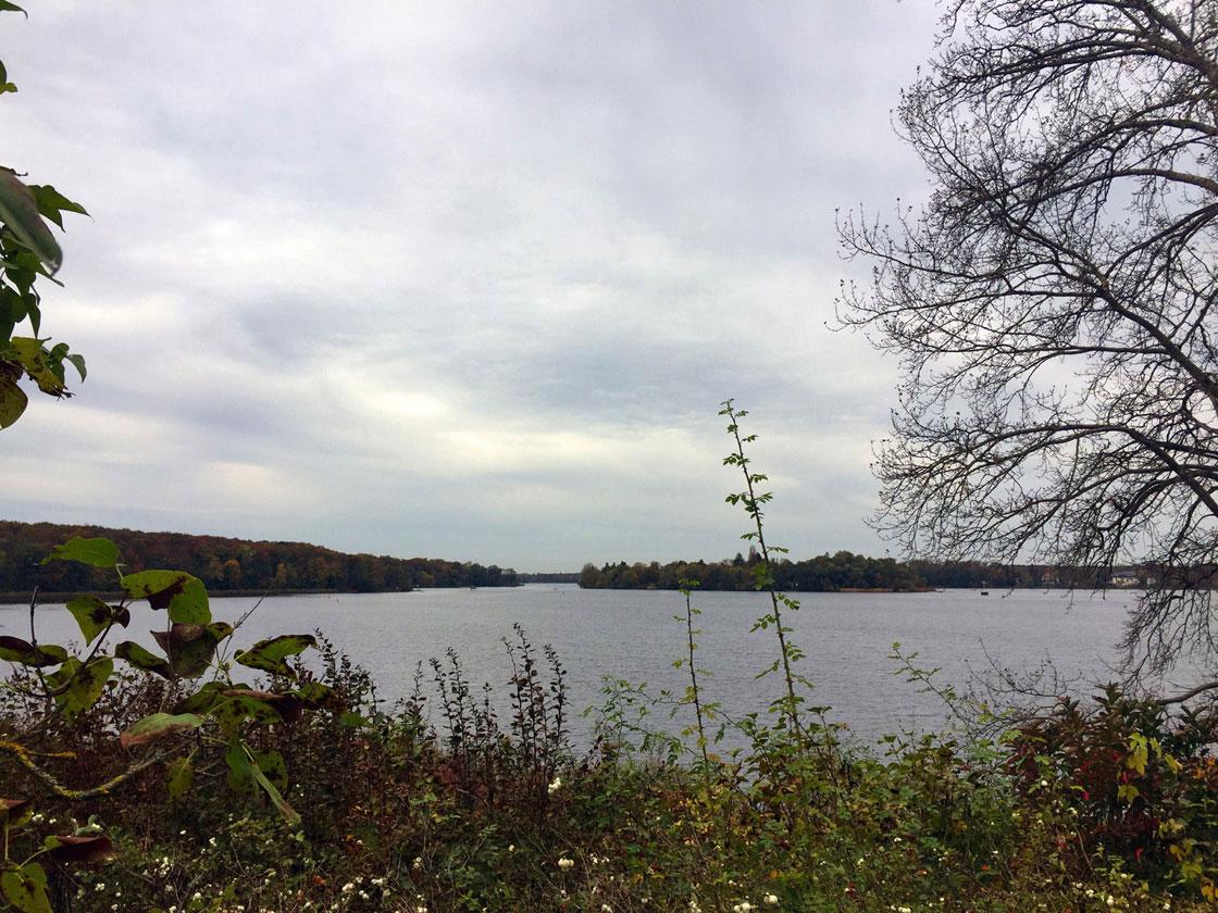 Spaziergang Pfaueninsel