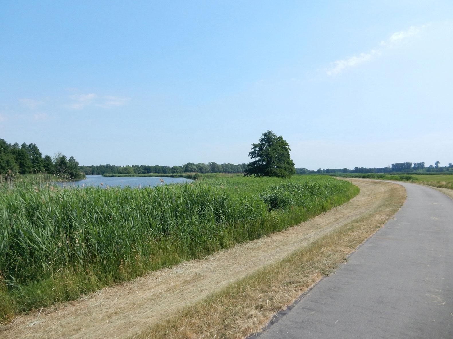 Havelradweg_Brandenburg_Potsdam_13